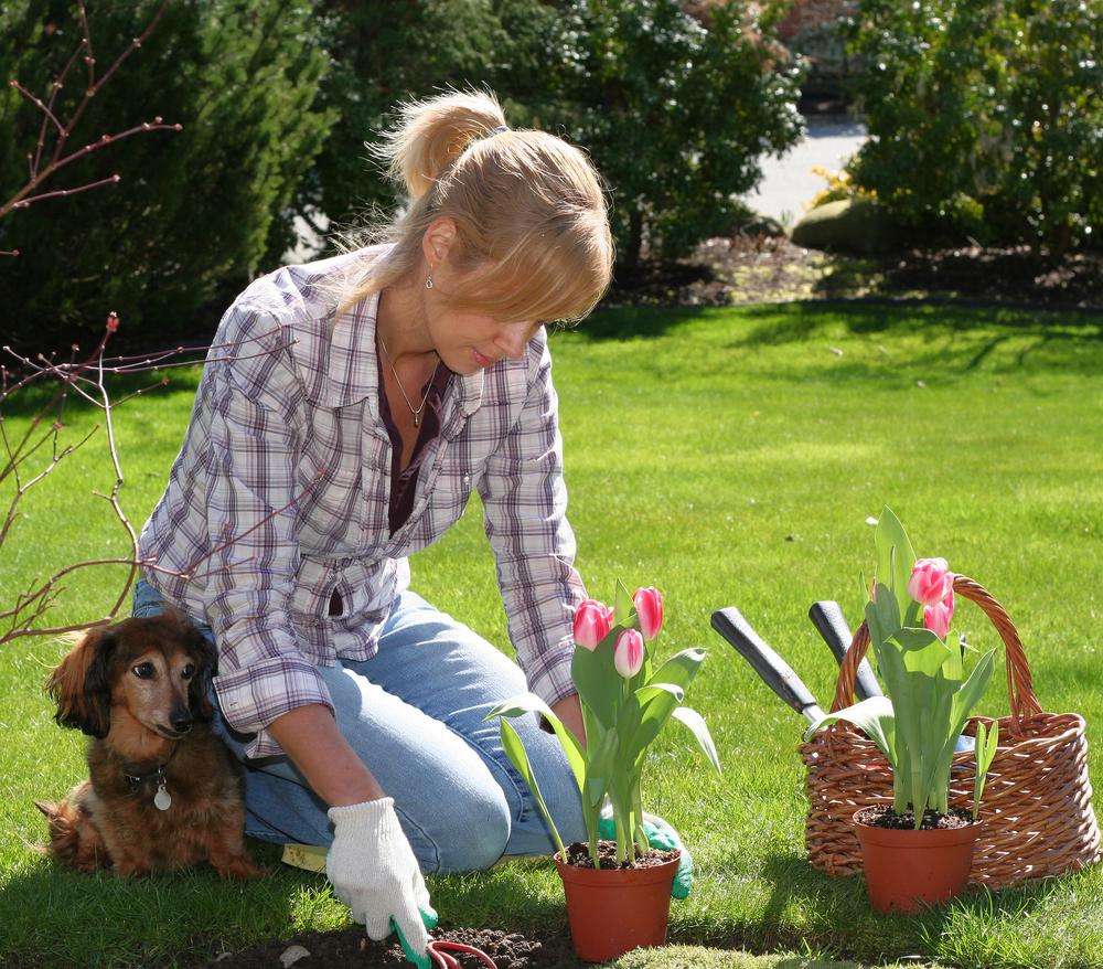 Ишу работу дом работник или садовник